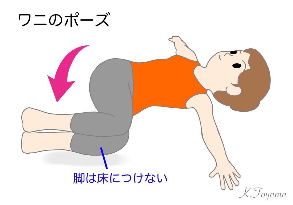 2_IMG_0757 親子でチャレンジ!「どうぶつストレッチ☆」おうち時間で健康に!