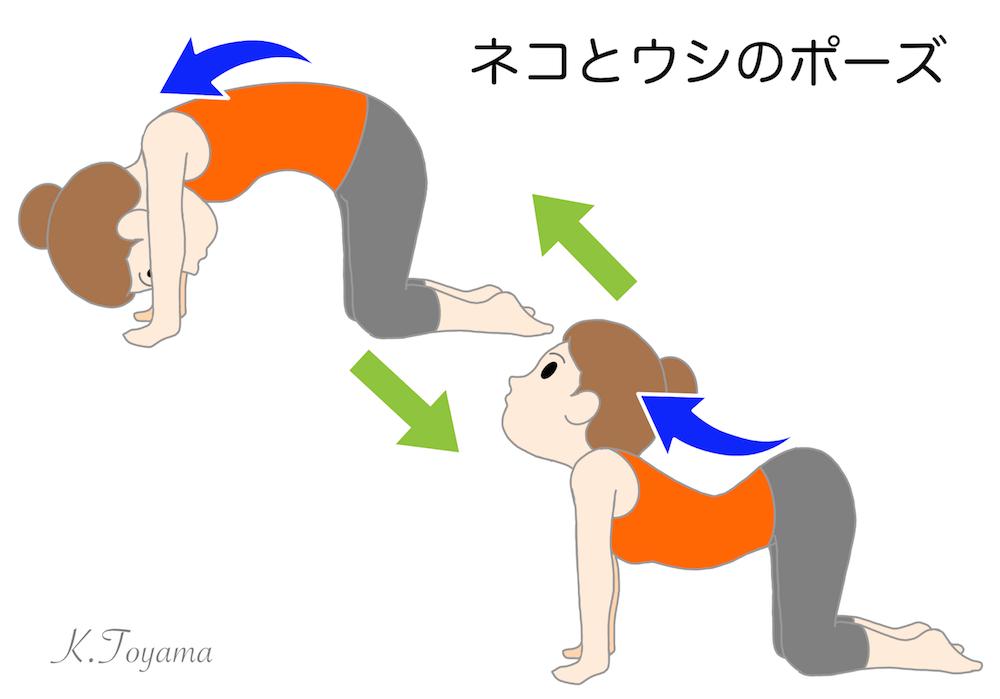 IMG_0772 親子でチャレンジ!「どうぶつストレッチ☆」おうち時間で健康に!